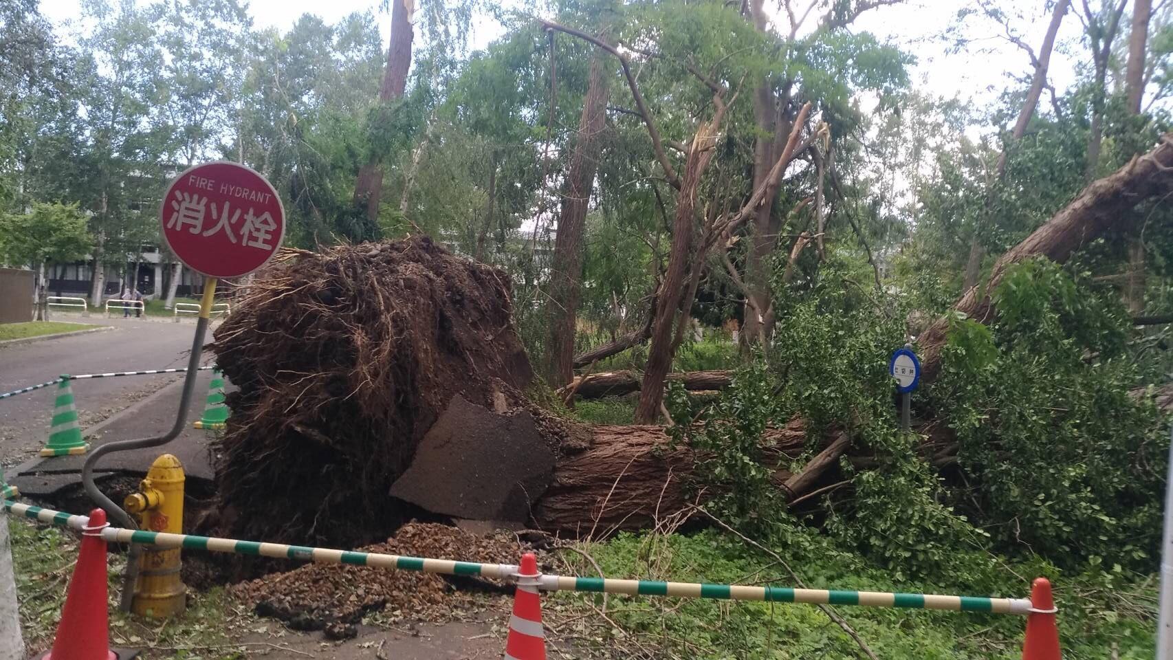 台風と地震で本学も被害【被害まとめ】