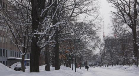 いよいよ雪のシーズンへ! 滑らない(!?)話 【編集部ブログ】
