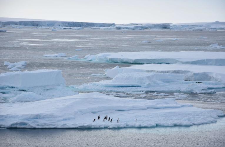 エキスパートが語る南極研究の最前線 北大低温研・青木茂准教授、南極地域観測隊長としての3カ月半を振り返る
